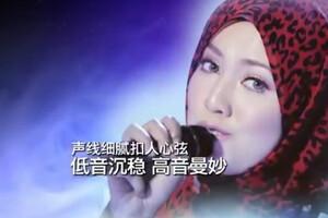 我是歌手20140221