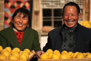 舌尖上的中国主食的故事