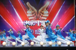 出彩中国人第五期
