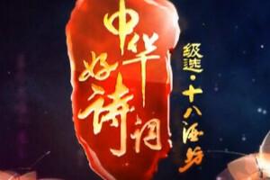 中华好诗词20131228