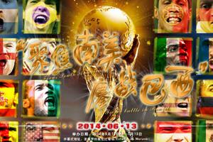2014年巴西世界杯分组