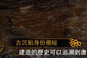 文化大观园20150131