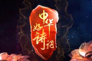 中华好诗词20151114