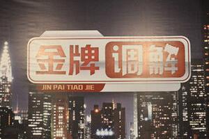 金牌调解20151113