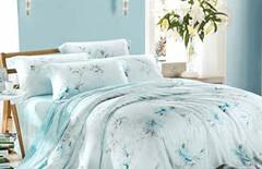 天丝夏季床上用品床单被套图片