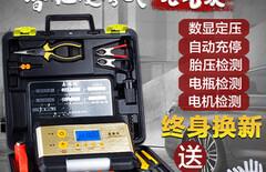 充气泵双缸图片