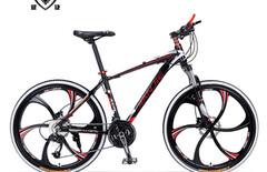 一体轮自行车图片