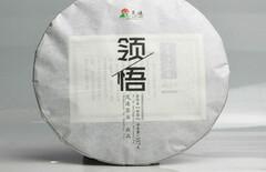 兆加茶业图片
