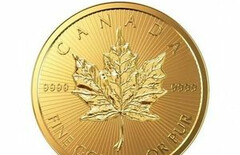 加拿大枫叶金币1克图片