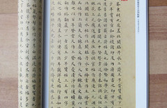刘小晴楷书图片