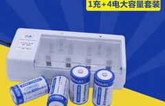 一号电池充电电池图片