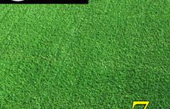 人工草皮地毯图片