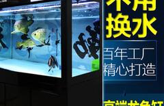 超白鱼缸大型1.5米图片