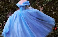 灰姑娘的婚纱礼服图片