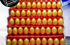 厂家直销陶瓷金蛋图片