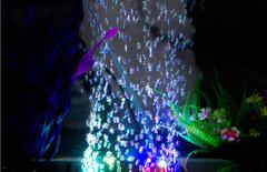 鱼缸灯气泡图片