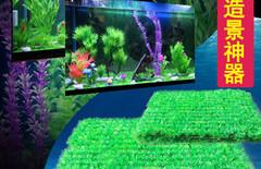 鱼缸假水草图片