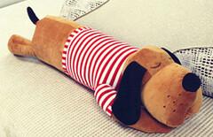 睡觉抱枕毛绒图片