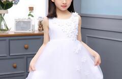 2016中小童女童夏装连衣裙图片