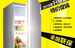 容声双门冰箱128图片