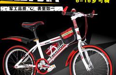 学生跑单车图片