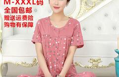 夏款女人睡衣纯棉短袖图片